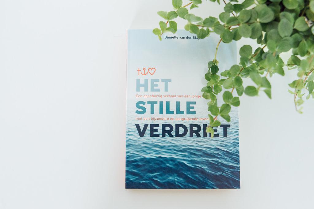 Boek Het stille verdriet van Daniëlle van der Stap over het herkennen en accepteren van hooggevoeligheid